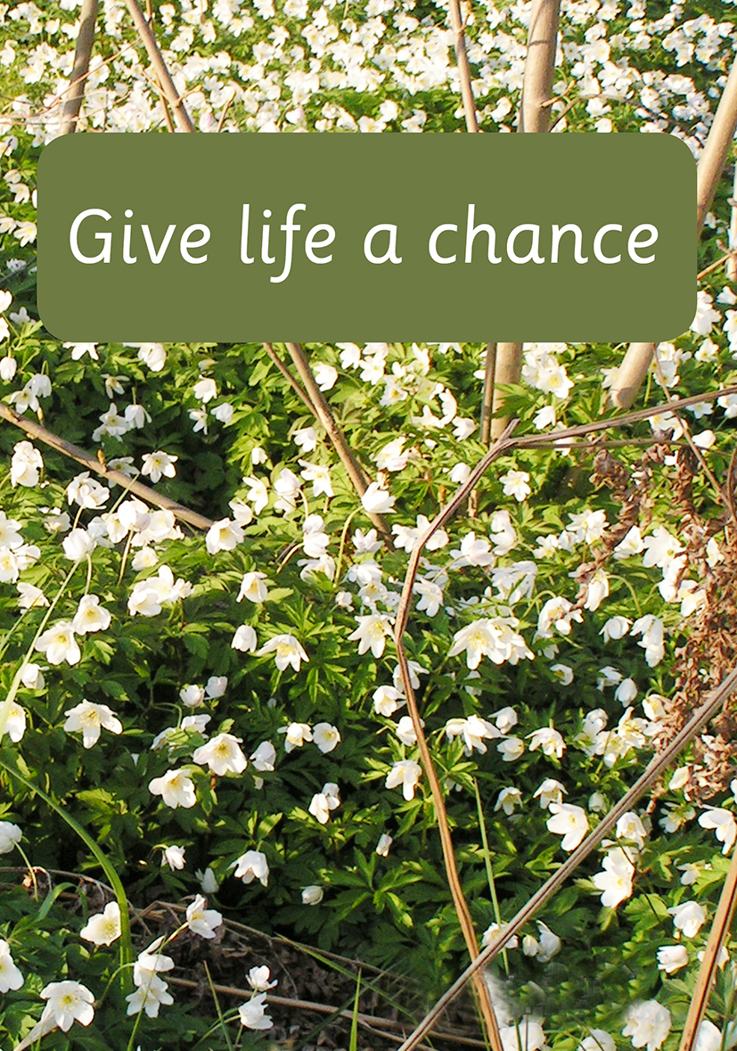 Omslag till Give life a chance