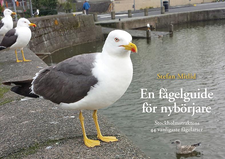 Omslag till En fågelguide för nybörjare