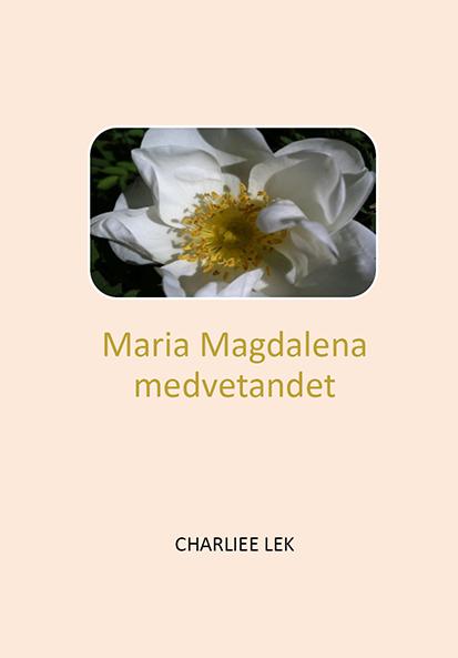 Omslag till Maria Magdalena medvetandet